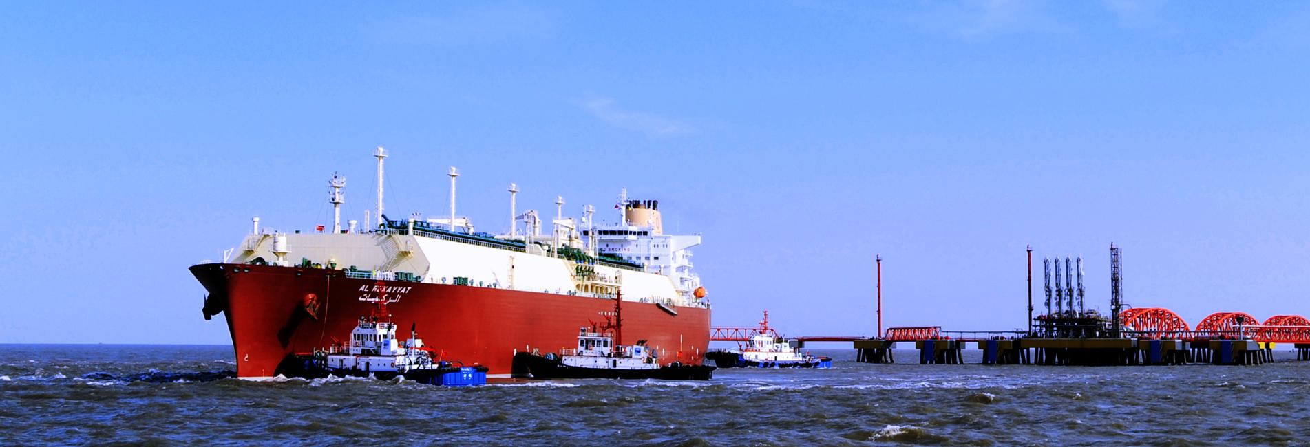 Yangkou Port zone outlines major goals for 2021