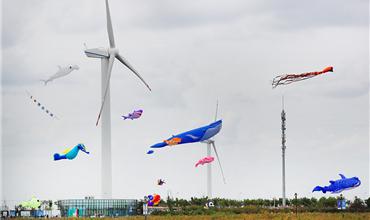 In pics: Huge kites fly high over beach in Jiangsu