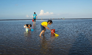 Golden Beach Scenic Area to reopen on July 1