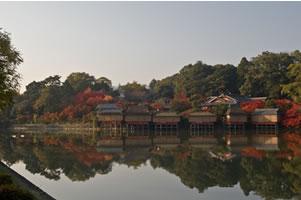 NAGAOKAKYO1.jpg