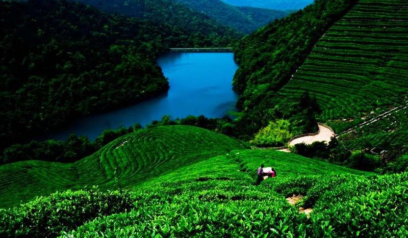 Fuquan Hill Scenic Area
