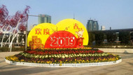 In pics: 800,000 pots of flowers decorate Ningbo for New Year