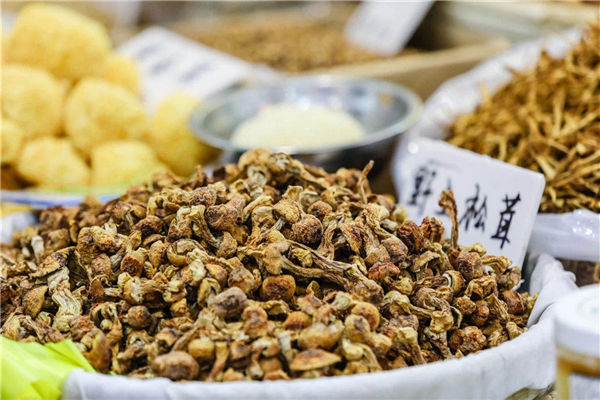 National food expo to open in Ningbo tomorrow