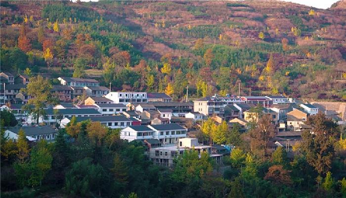 Autumn views in Zhangshui town enchant visitors