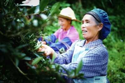 Ningbo helps 11 counties shed poverty