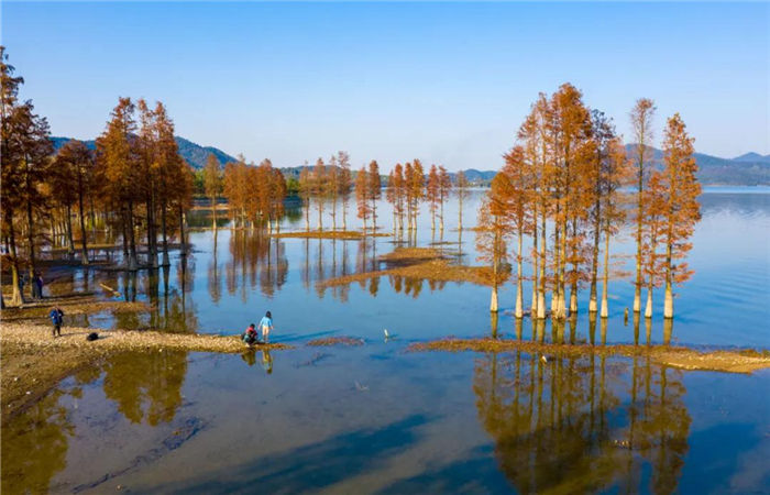 Recommended places to admire autumn views in Ningbo