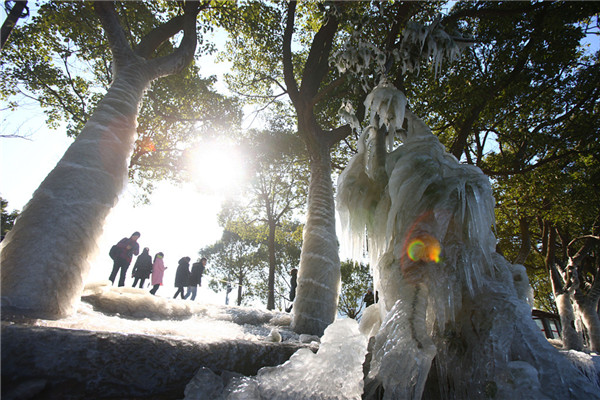 Icicles form as cold air sweeps Ningbo