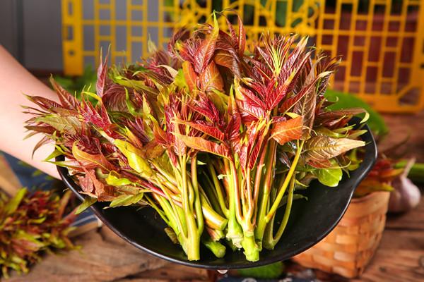 Xiangchun: a seasonal cuisine in early spring