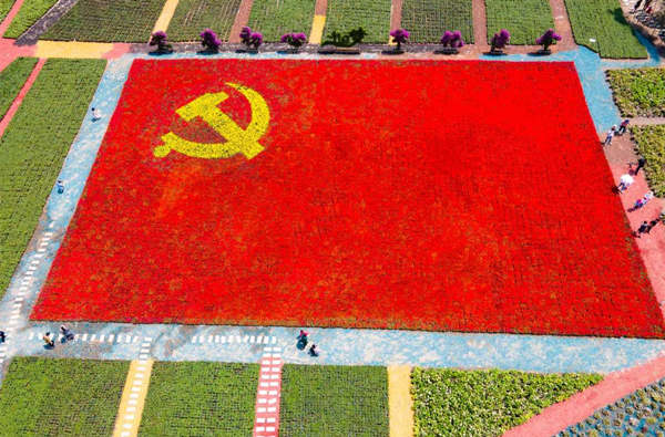 Party flag pattern created with flowers in Ninghai