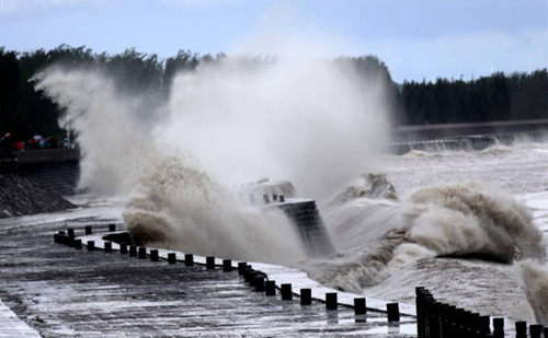 Classes suspended, transportation hit as Zhejiang upgrades typhoon response