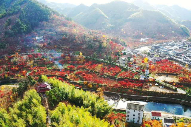 Snapshots of Siming Mountain in late autumn