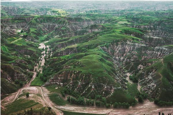 包括被称为地球环境癌症的砒砂岩在内的丘陵沟壑区和干旱硬梁区,占到鄂尔多斯国土面积的近一半。图为鄂尔多斯东区丘陵沟壑区治理成效。.png