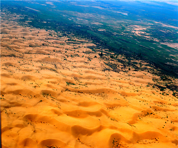 """鄂尔多斯人长期与沙漠做斗争,总结出了一套行之有效的治沙模式——""""南围北堵中切割"""",即在库布其沙漠南北边缘地带营造锁边林,内部十大季节性河流及公路栽植护岸林、护路林,将库布其沙漠分割包围,分而治之。图为库布其沙漠锁边林。.png"""