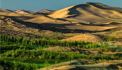 Anti-desertification work in Kubuqi draws international attention
