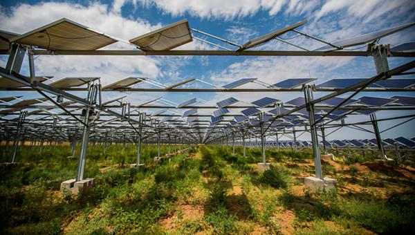Kubuqi Desert turns to solar power base