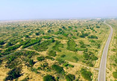 Ordos starts development of 430 km ecological corridor