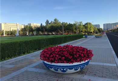 Ordos' garden-style Kangbashi district draws in tourists