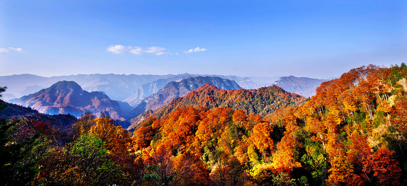 Micang Mountain Scenic Area.jpg