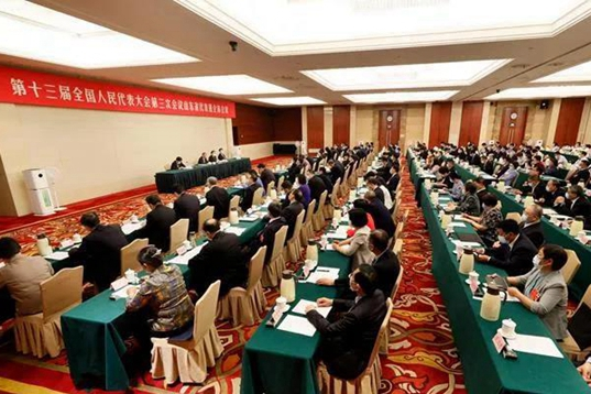 Shandong NPC delegation holds plenary meeting