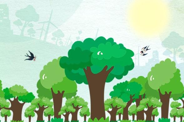 Xi plants roots of greener China