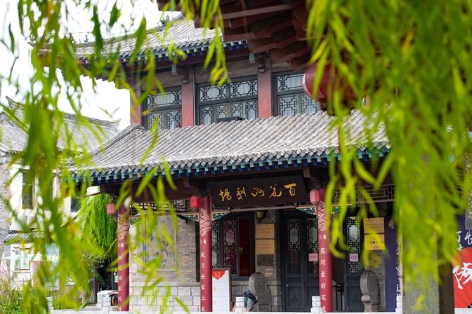 Watch it again: Expats exploring Jinan's spring culture