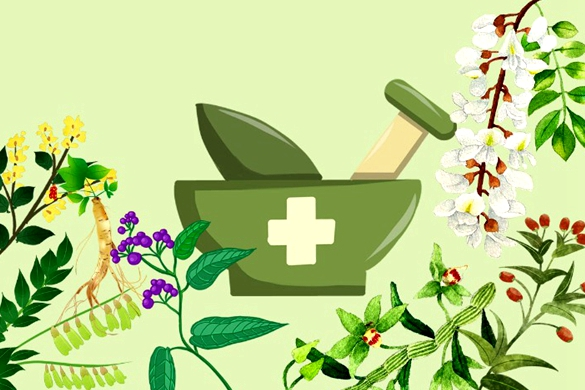 Understanding TCM and its role in fighting COVID-19