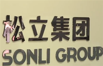 Sonli Group