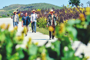 Afforestation, poverty alleviation combine for win-win results in Shanxi
