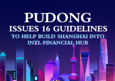 pudong guidelines.jpg