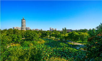 China Merchants Tianjin International Travel Co Ltd