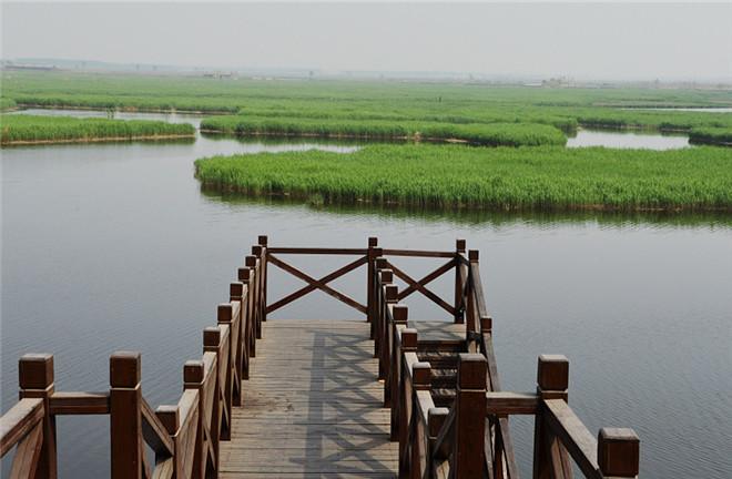 Qilihai wetland natural reserve