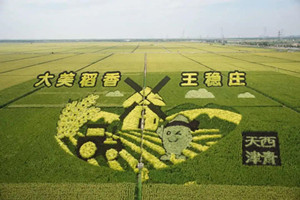 Band of green to link coastal areas with central Tianjin