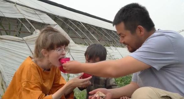 Swedish girl explores dragon fruit farm in Tianjin