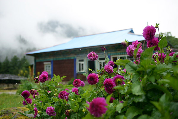 Homestays create a way to wealth for remote Tibet county