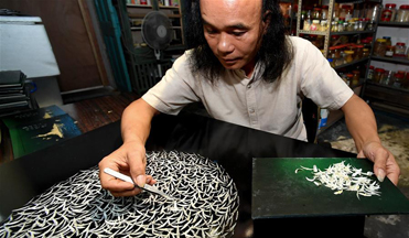 Fish-bone paintings created by Chinese artist displayed in gallery in Xiamen