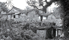 Trade development of Xiamen-Ancient Tea-Horse Road