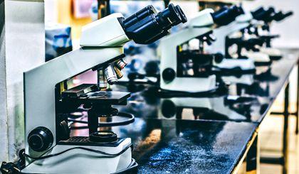 Policies on scientific innovation