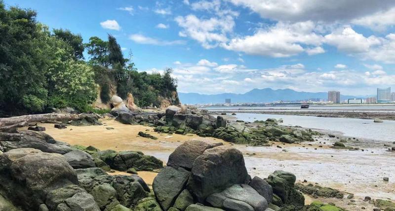 In pics: Stunning marine abrasion landforms in Xiamen