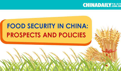 Food security in China: Prospects and policies
