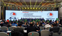 Chinese athletics reviews successful 2019