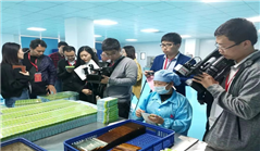 Cities in southwestern Fujian deepen ties with industrial projects