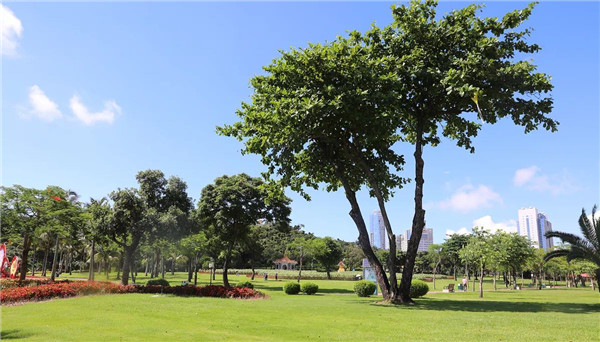 Zhuhai proudly adds more inviting, verdant free parks