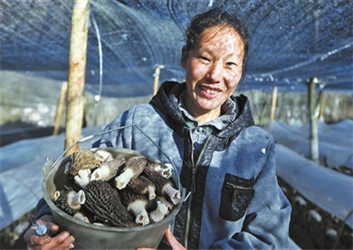 'Beautiful' Zhuhai housing lifts needy in ethnic Yunnan